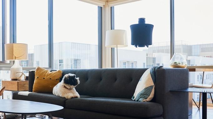 Drone Aire: Il tuo watchdog domestico gestito tramite assistente vocale Alexa
