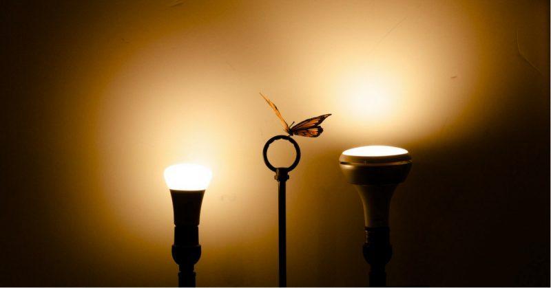 Plafoniere Led Philips Prezzo : Philips hue: le lampadine smart che hanno cambiato il modo di illuminare