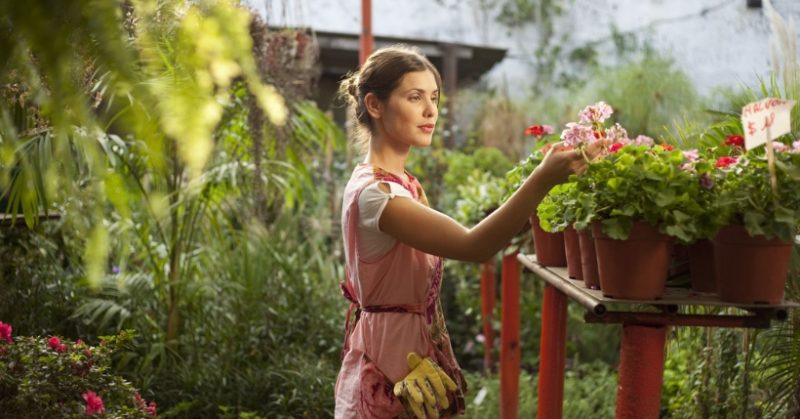 Idee regalo per chi ama il giardinaggio: Kit per terrazzo, orto e fiori