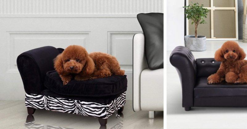Cuscini Grossi Per Divani.Divano Per Cani Di Lusso Le Piu Belle Cucce Luxury Per I 4 Zampe