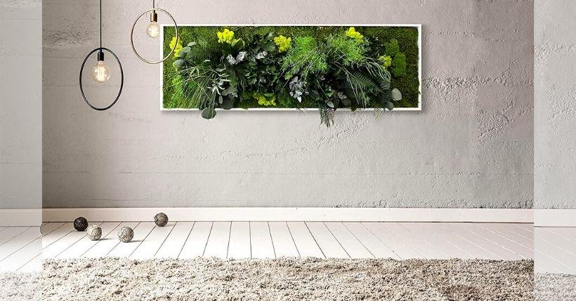 quadri vegetali stabilizzati