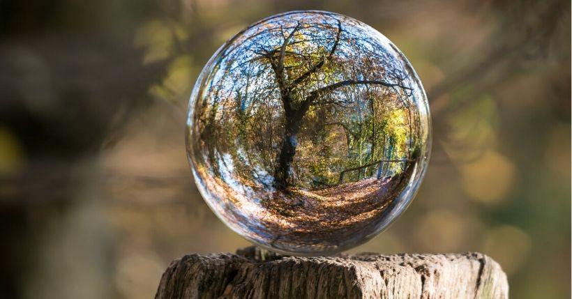 L'ambiente e il clima sono la vera emergenza dei nostri giorni. Ecco i consigli per comprendere meglio la situazione con i libri sull'ambiente più attuali
